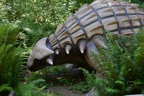 dinosaur adventure 49.jpg