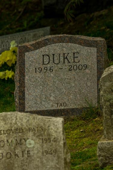 hartsdale pet cemetery-23.jpg