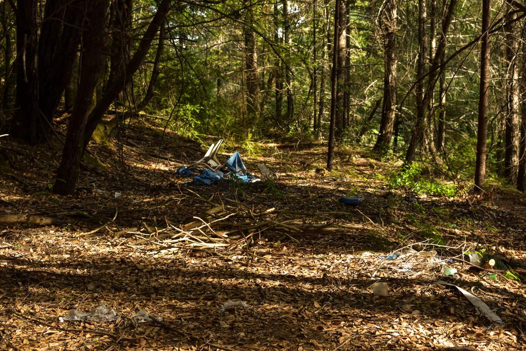 willow creek-36.jpg