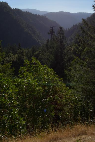 willow creek-23.jpg
