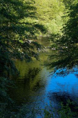 willow creek-69.jpg