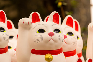 temple of the lucky cat-40.jpg