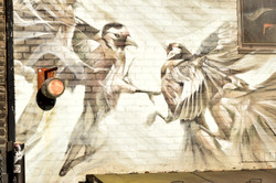 the sparrows are flying again