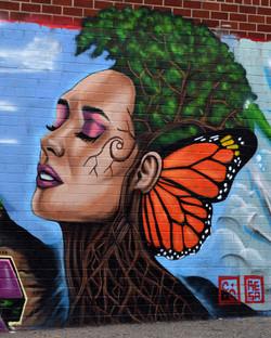 resa butterfly