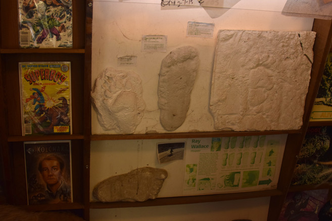 bigfoot discovery museum 7.jpg