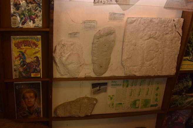 bigfoot discovery museum 7.jpg