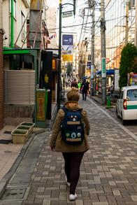 cat street-13.jpg