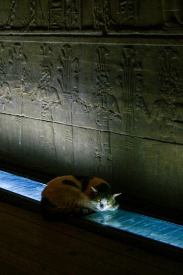 Philae Temple-45.jpg