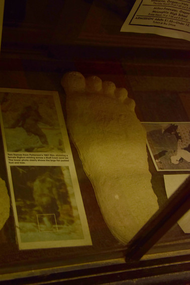 bigfoot discovery museum 10.jpg