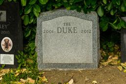 hartsdale pet cemetery-65.jpg