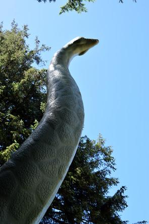 dinosaur adventure 13.jpg