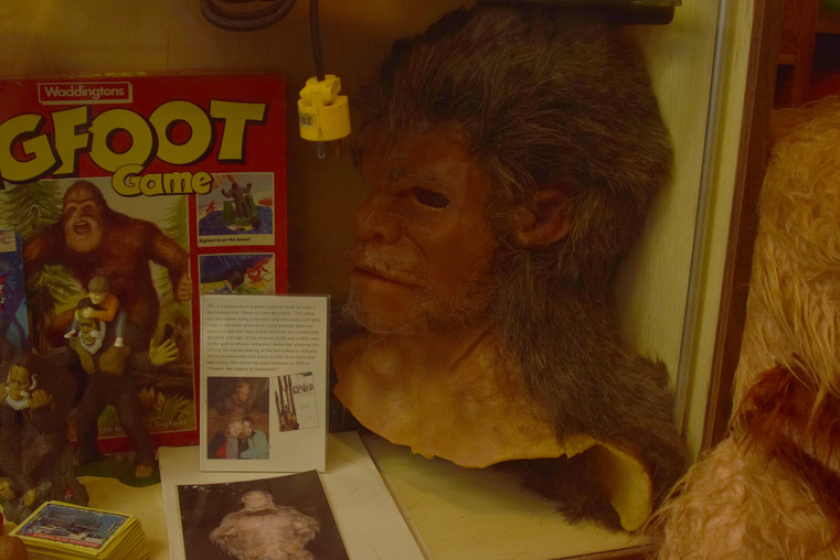 bigfoot discovery museum 13.jpg