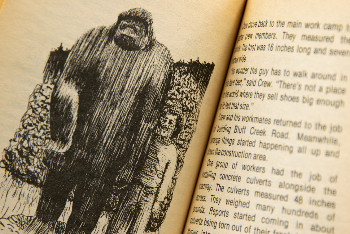 bigfoot book-3.jpg