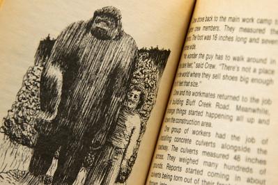 bigfoot book-3.jpg