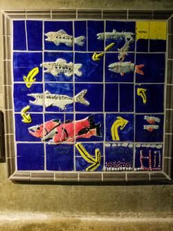 fish ladder-9.jpg