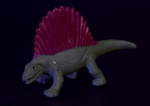 In the end, Dimetradon was another victim of the Permian Extinction that gave way to true dinosaurs.