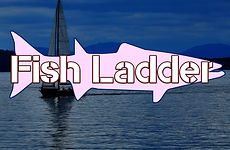 story logo fish ladder.jpg