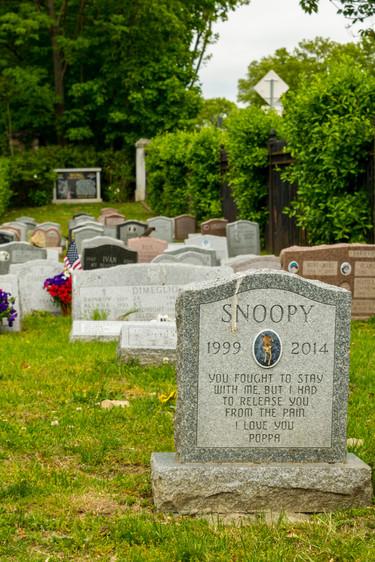 hartsdale pet cemetery-63.jpg