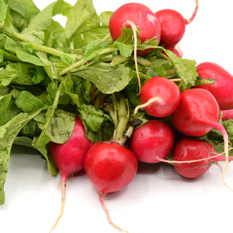 Radishes on White