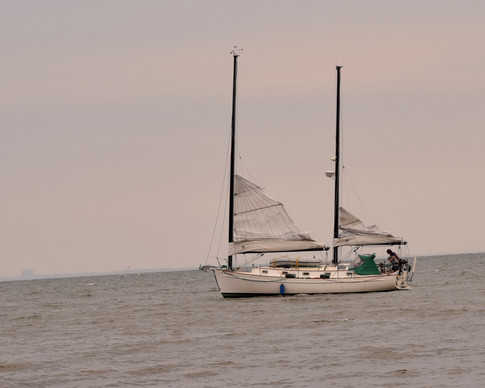 A few brave souls ventured out on their yachts.