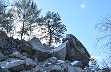 freetown state forest-14.jpg