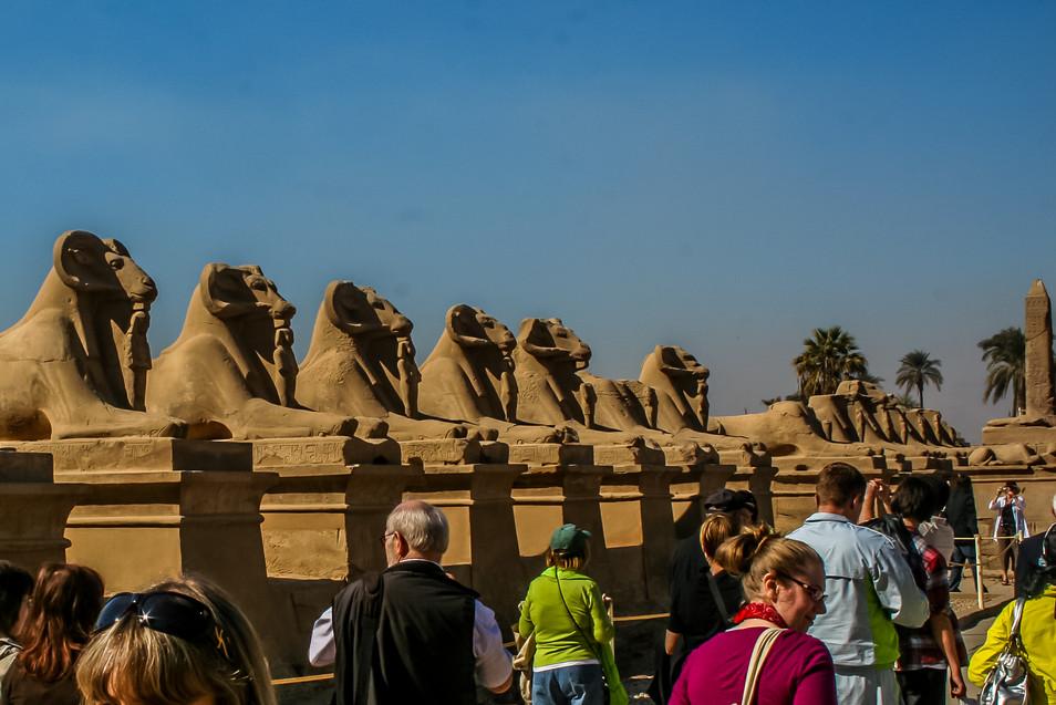 avenue of sphinx-1.jpg