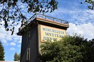 winchester 24.jpg