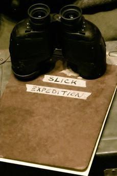 slick glasses-1.jpg