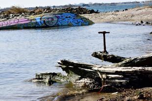 Indy-Anna Bones was exploring Broken Glass Beach in Dead Horse Bay, way down in South Brooklyn.