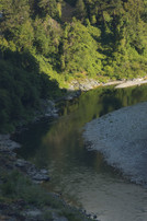 willow creek-17.jpg
