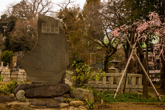 temple of the lucky cat-58.jpg