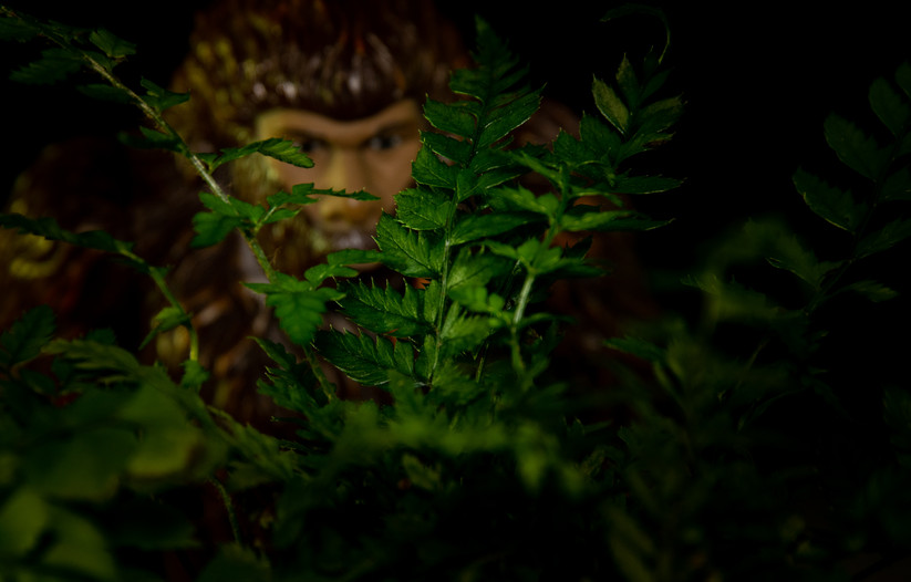 bigfoot peeking 1.jpg