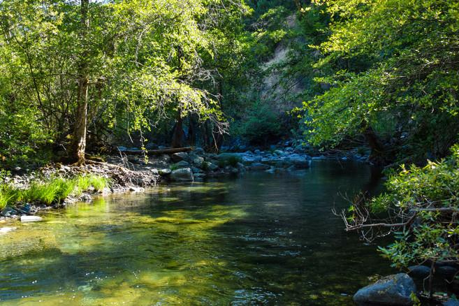 willow creek-62.jpg