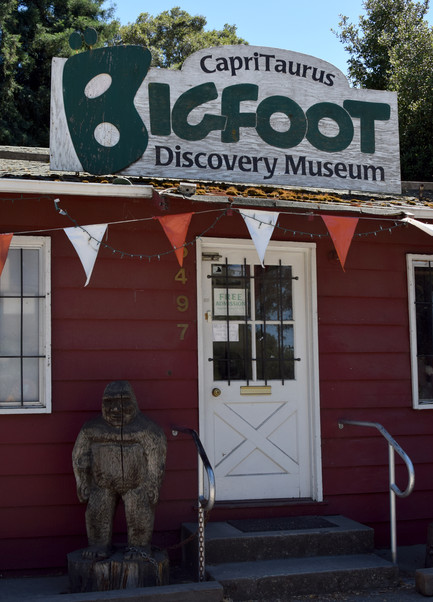 bigfoot discovery museum 23.jpg