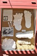 bigfoot discovery museum 18.jpg