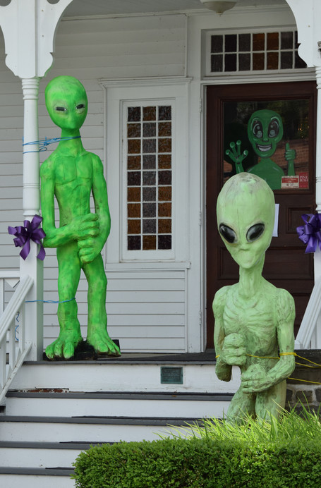 """Pine Bush was made famous in the early 1990's, when Ellen Crystall published her book, """"Silent Invasion,"""" detailing her UFO experiences in the region."""