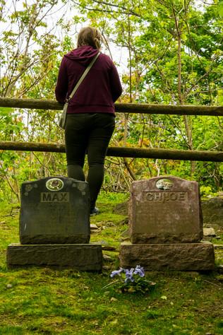 hartsdale pet cemetery-11.jpg