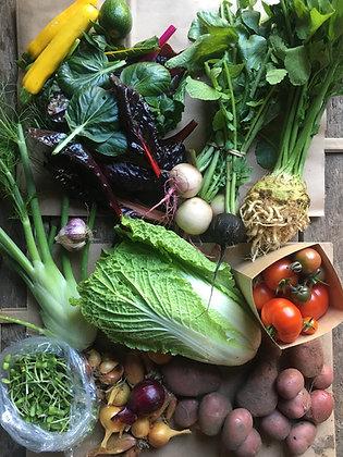 20 Grönsakskassar