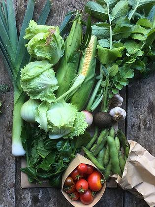 24 Grönsakskassar