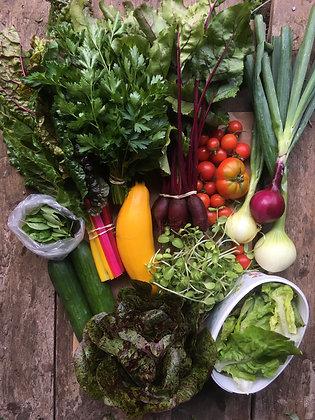 20 Grönsakskassar (uppdelad betalning)