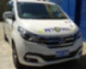 Pet taxi, pet transport, pet travel, pet tainers, pet movers