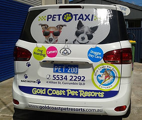 Pet taxi, pet transport, pet travel, pet tainers, pet movers, dog and cat transport