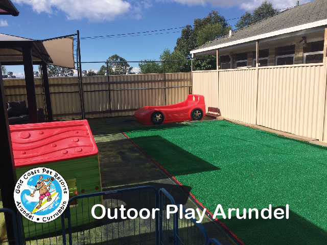 Arundel gold coast pet resorts play