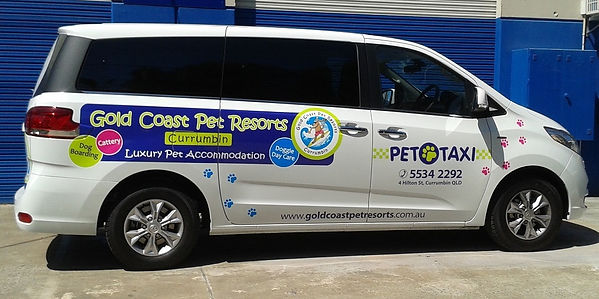 Pet taxi, pet transport, pet travel, pet tainers, pet movers