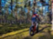 fatbike5.jpg