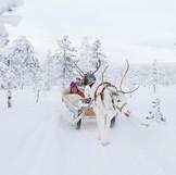reindeer-safari-lapland_edited.jpg