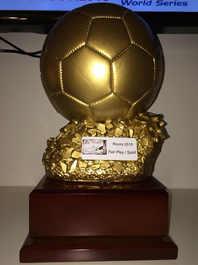 AFC_Rovinj_2015 (10).JPG