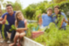 Gardens for HeroesTherapeutic Healing Gardens Veterans, Horticultural Therapy for Veterans