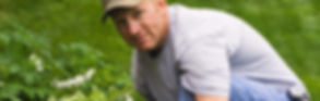 Horticultural Therapy for Veterans, Therapeutic Healing Gardens Veterans