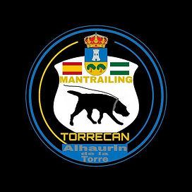 Torrecan Logo.jpeg